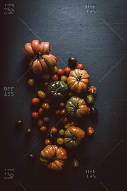 Overhead view of a variety of tomatoes