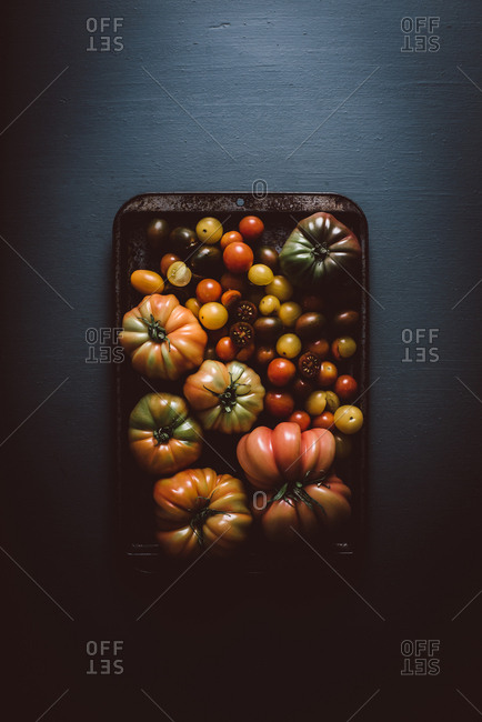 Heirloom tomatoes on a baking sheet on dark background
