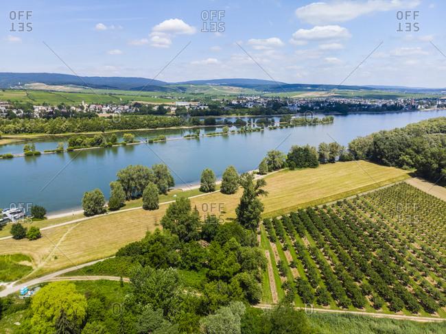 Germany- Rhineland-Palatinate- Aerial view of Heidesheim am Rhein- Rhine river and Eltville