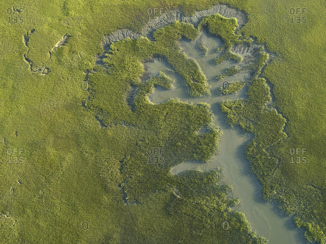 Aerial view over marshes of the Machipongo River- Accomack County- Virginia- USA