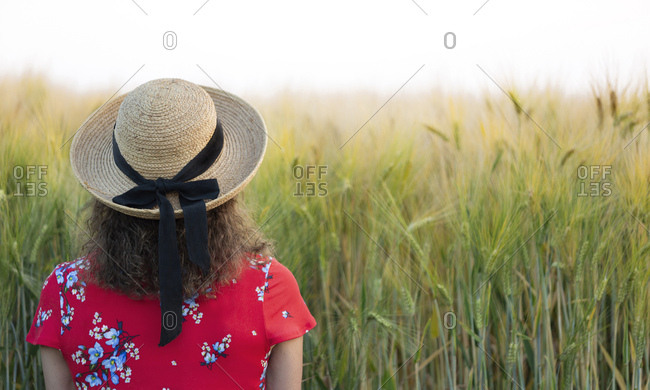 Back view of woman wearing straw hat and red summer dress with floral design standing in front of grain field