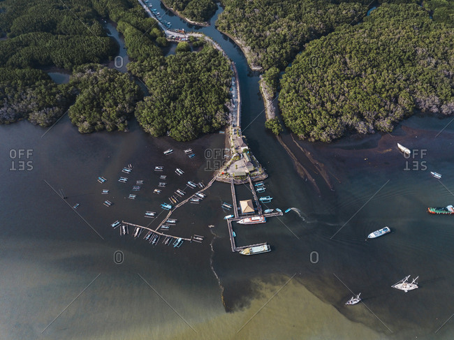 Aerial view of banca boats near mangrove forest