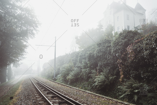 Diminishing perspective of railroad track against sky by plants during foggy weather
