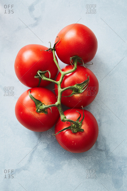 Bunch of red tomatoes on a vine on light background