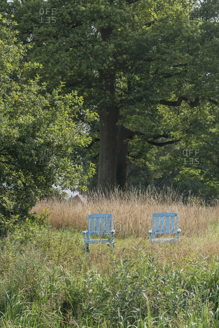 Two blue chairs by trees in the countryside
