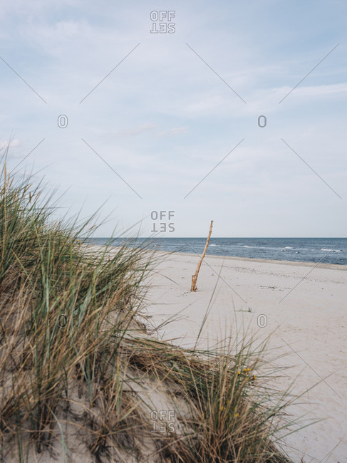 Beach scene in Osterlen, Sweden