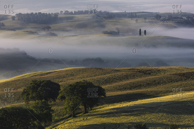 Picturesque misty valley of Tuscany