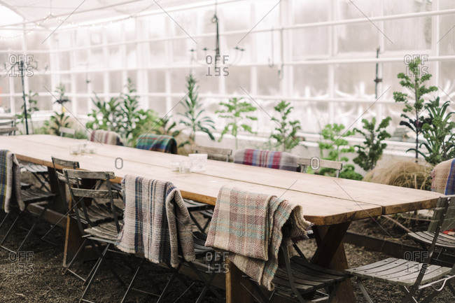 Chairs arranged by table in greenhouse