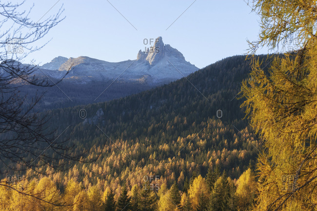Scenic view of mountains against clear sky in forest during autumn