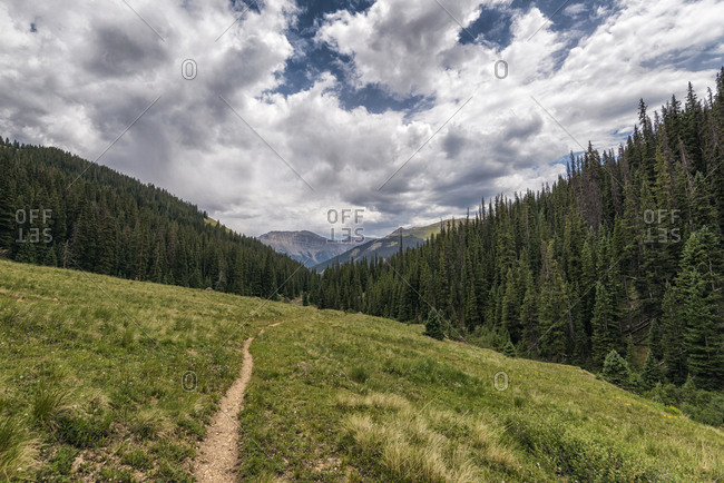 Hiking Trail in the Uncompahgre Wilderness