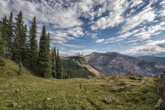 Landscape in the Uncompahgre Wilderness