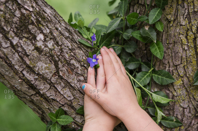 Cropped hands of girl touching tree at yard