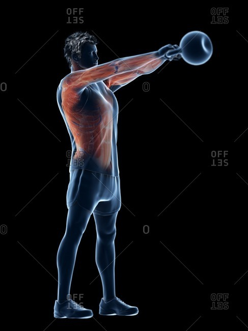 Man doing kettlebell workout, conceptual computer illustration.