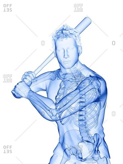 Baseball player's skeleton, computer illustration.