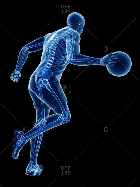 Basketball player's skeleton, computer illustration.