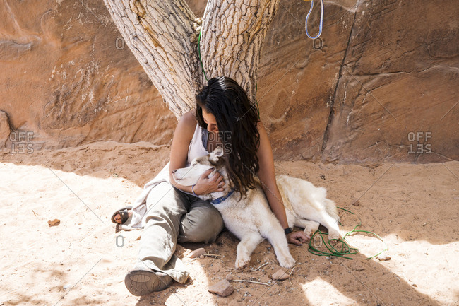 High angle view of woman petting dog while sitting by tree in forest