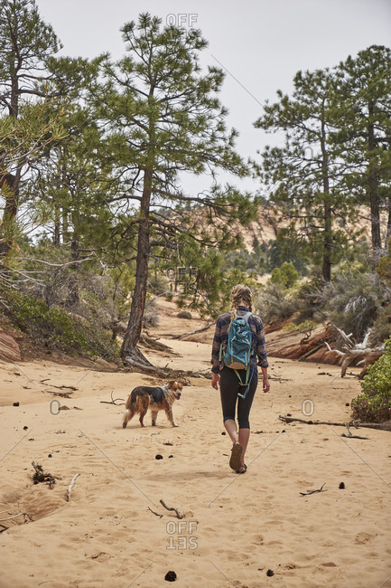 Rear view of female hiker with dog walking on sand at Canaan Mountain Wilderness