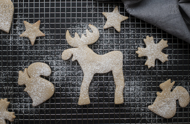 Overhead view of gingerbread cookies on metal grate in kitchen during Christmas
