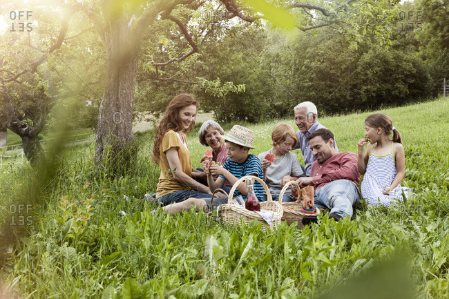 Extended family having a picnic in meadow