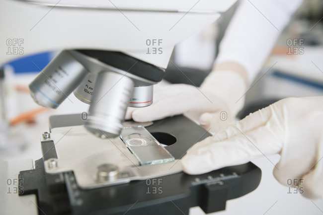 Crop view of hands of scientist putting sample to analyze by microscope in lab