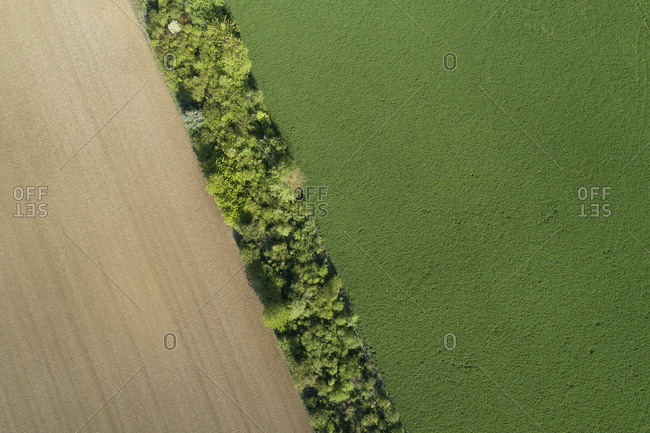 Aerial view trees and agricultural fields- Franconia- Bavaria- Germany