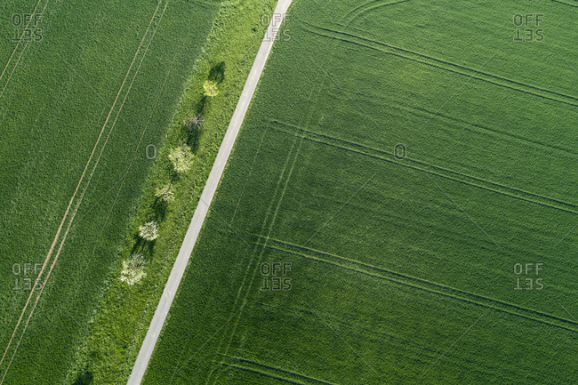 Aerial view of tree lined road through agricultural fields Franconia- Bavaria- Germany