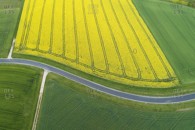 Abstract aerial view of rural road through agricultural fields with oilseed rape field and green wheat field- Franconia- Bavaria- Germany