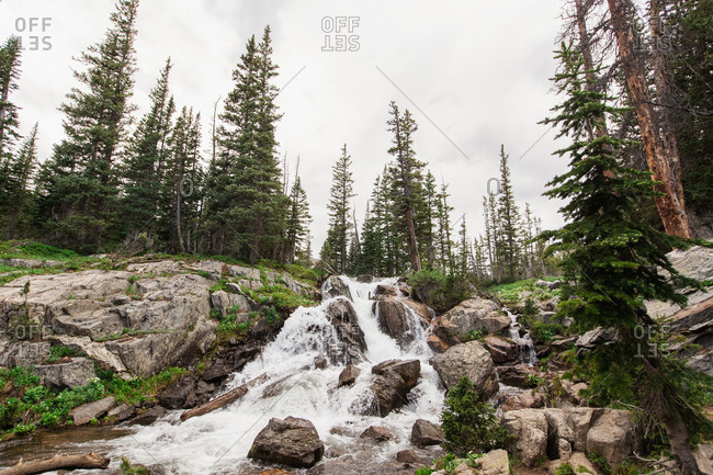 Beautiful Colorado Waterfall Surrounded by Trees and Rocky Terrain