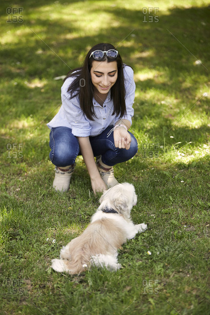 High angle view of woman playing with dog while crouching on grassy field at park