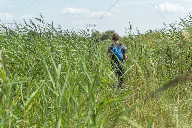 Rear view of young man with backpack walking in a field
