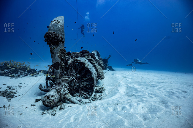 100 feet deep at a airplane wreck off the coast of Hawaii Kai, Oahu
