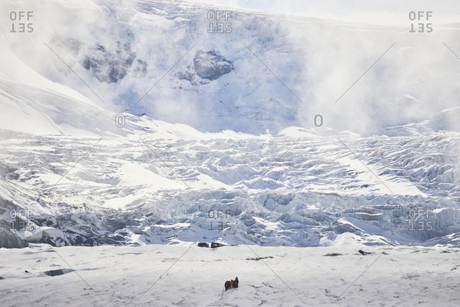 Athabasca Glacier, Ice field Parkway, Jasper National Park, Alberta, Canada