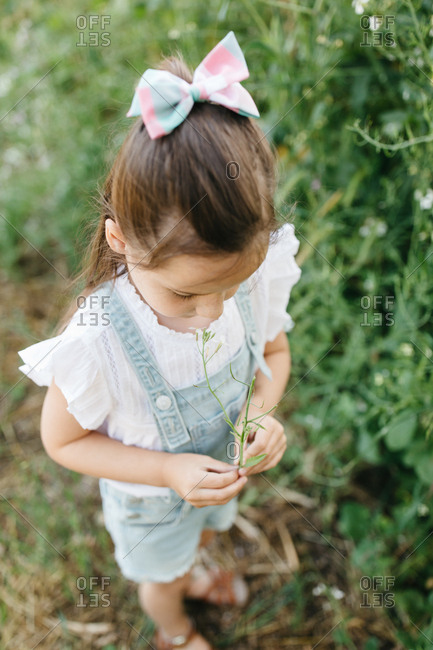 Little girl in a field picking flowers