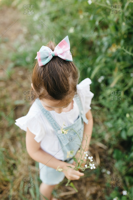 Young girl in a field picking flowers