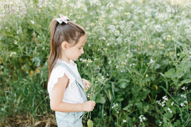 Side view of a little girl in a field picking flowers