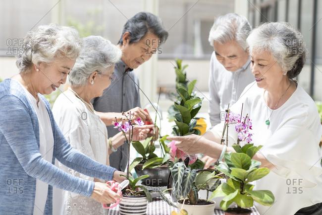 Senior Chinese friends in nursing home