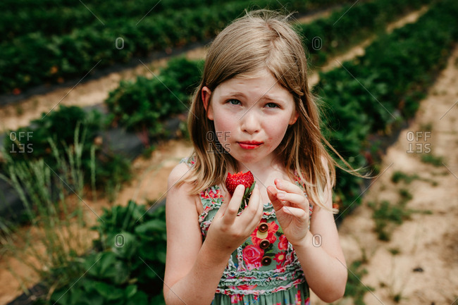 Girl eating a freshly picked strawberry in a garden