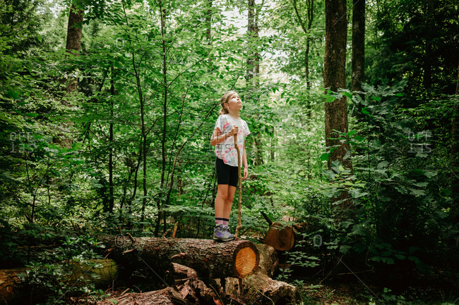 Girl standing on a cut down tree on a hike