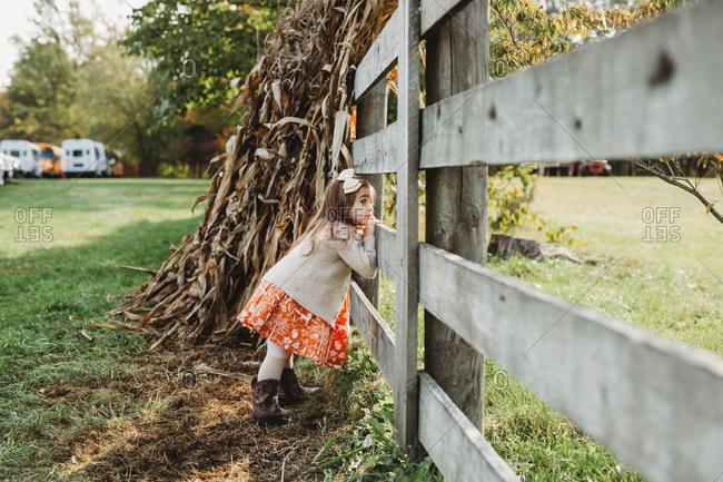 Pumpkin fall farm in Ohio