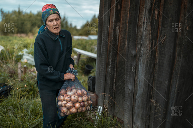 A old woman is carrying the sack with yellow onion at her garden