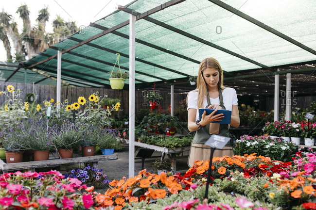 Female worker in a garden center using a tablet
