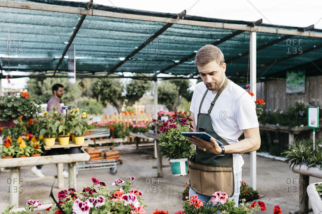 Worker in a garden center using a tablet