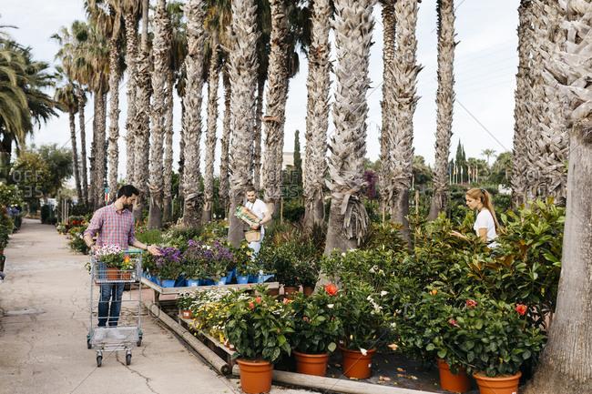 Customer with shopping cart walking in a garden center