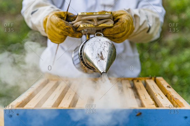 Beekeeper with honeycombs and smoker