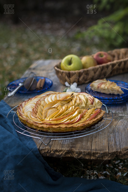 Apple pie served at a picnic in the garden