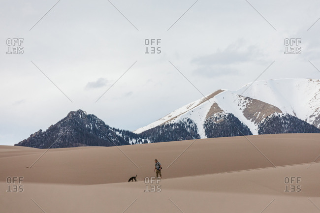 Hiker and small dog walk in the great sand dunes under snowy mountains