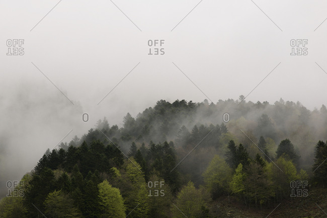 Mountainous landscape with fog in lescun valley, Pyrenees, France.