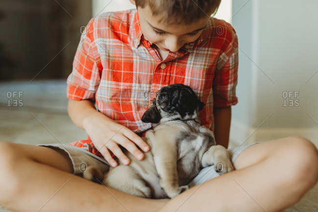 Boy and pug puppy look at each other