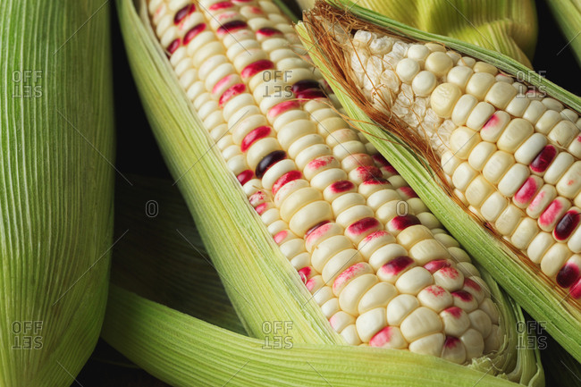 Close up of white and red corn