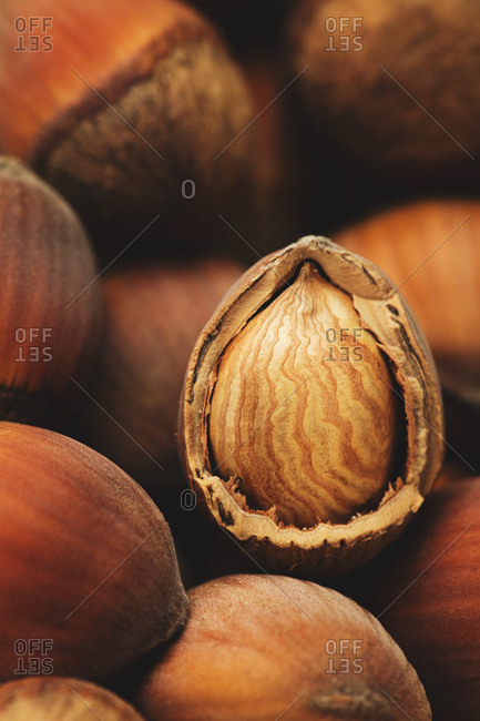 Detail of hazelnuts with a cracked open shell